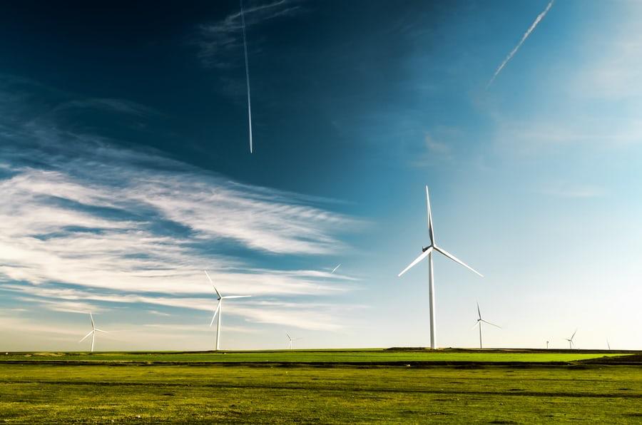 Séance d'information pour les ONG environnementales