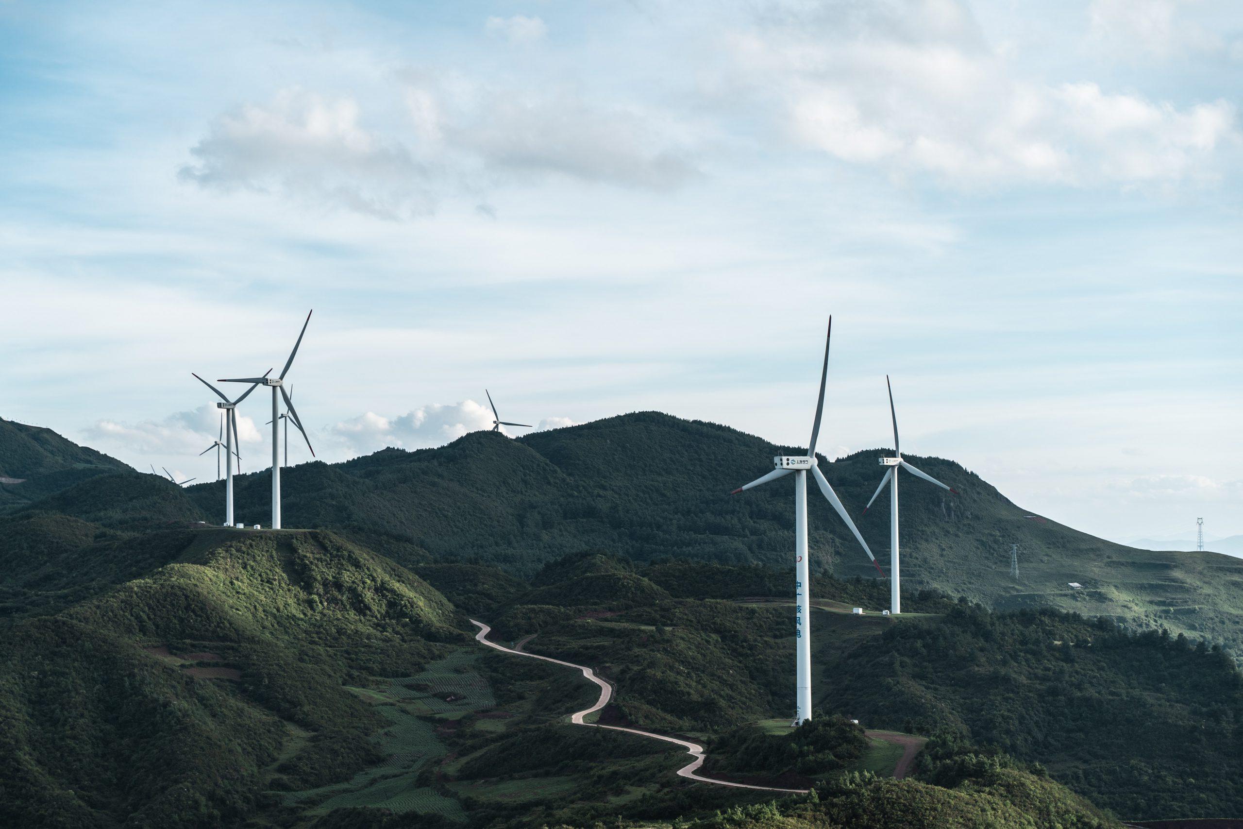 Retour sur la découverte de parcs éoliens